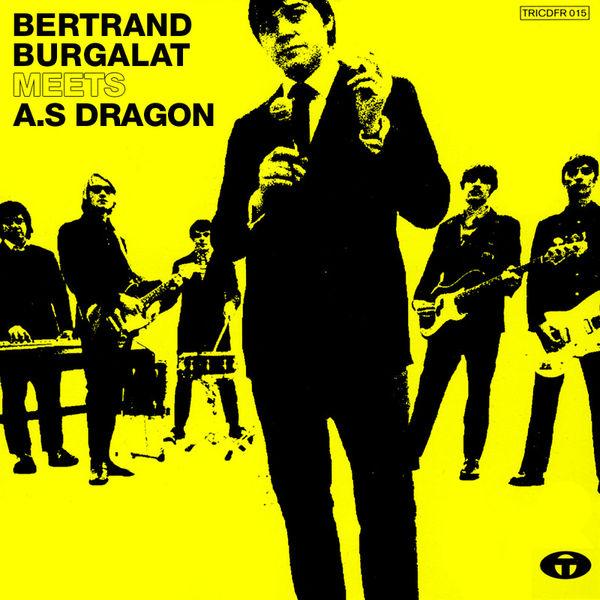 Bertrand Burgalat - Bertrand Burgalat Meets A.S Dragon