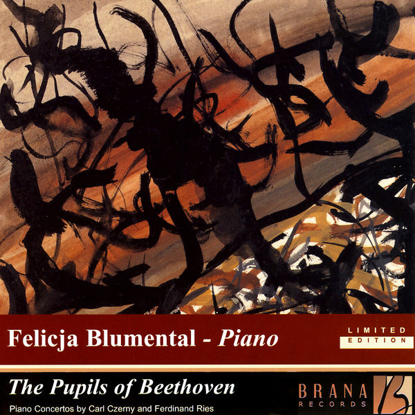 Vienna Chamber Orchestra - The Pupils Of Beethoven