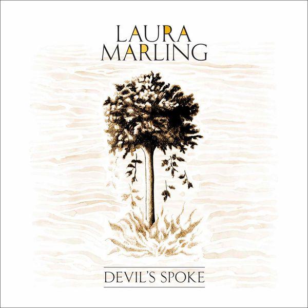 Laura Marling - Devil's Spoke