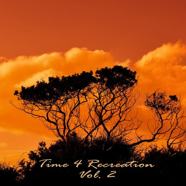 Various Artists - Time 4 Recreation, Vol. 2