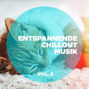 entspannende chillout musik vol 2 various artists t l charger et couter l 39 album. Black Bedroom Furniture Sets. Home Design Ideas