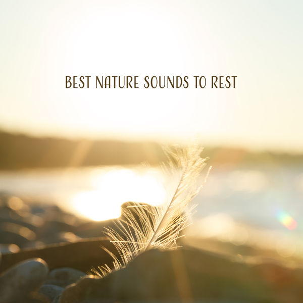Nature Sounds Artists - Best Nature Sounds to Rest – Pure Relaxation, Sounds of Forest, Deep Meditation, Peaceful Waves