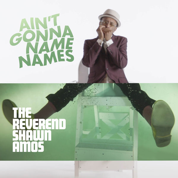 The Reverend Shawn Amos - Ain't Gonna Name Names