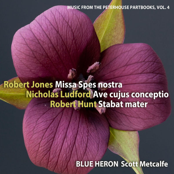 Blue Heron - Music from the Peterhouse Partbooks, Vol. 4