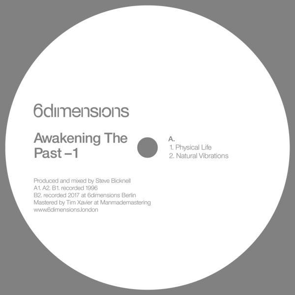 Steve Bicknell - Awakening the Past
