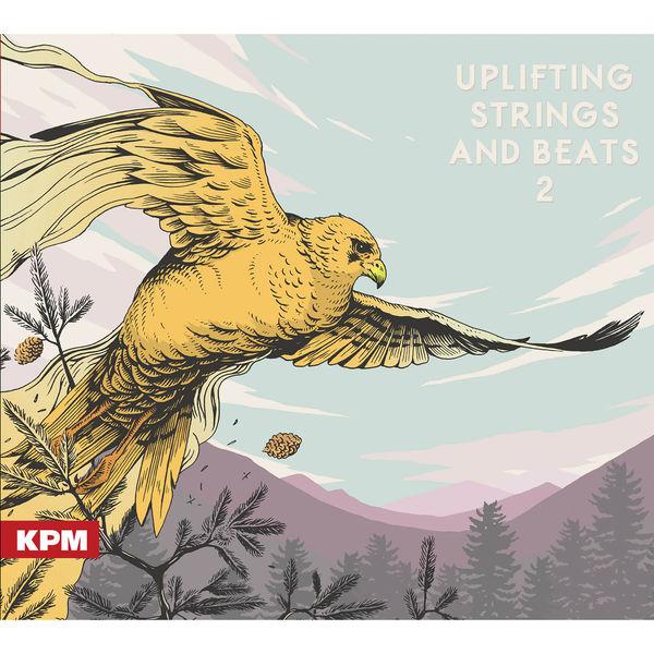 Adam Burns - Uplifting Strings and Beats 2
