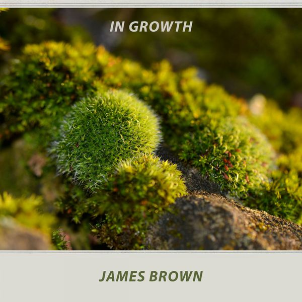 James Brown - In Growth