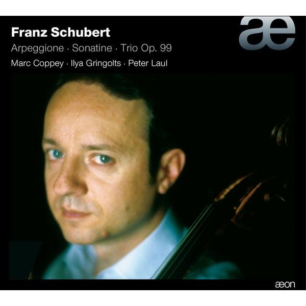 Ilya Gringolts - Schubert: Arpeggione / Sonatina / Trio No. 1