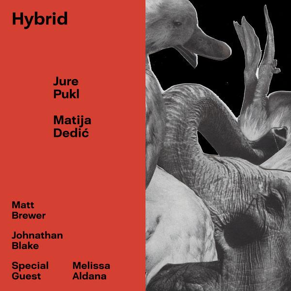 Jure Pukl - Hybrid (feat. Matt Brewer & Johnathan Blake)