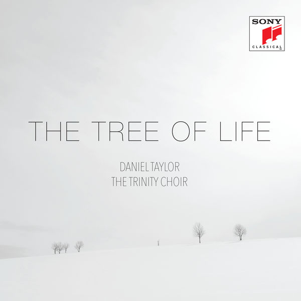 Daniel Taylor - The Tree of Life