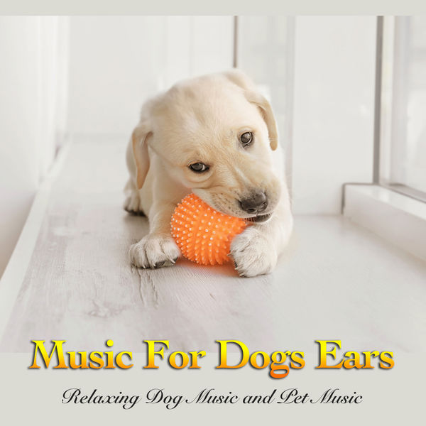 Dog Music - Music For Dogs Ears: Relaxing Dog Music and Pet Music