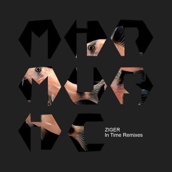 Ziger - In Time Remixes