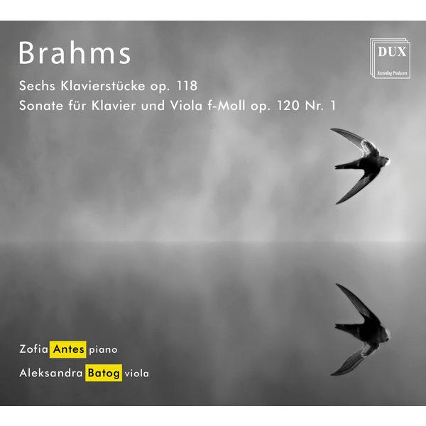 Zofia Antes - Brahms: Chamber Works