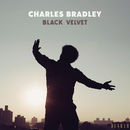 Black Velvet | Charles Bradley