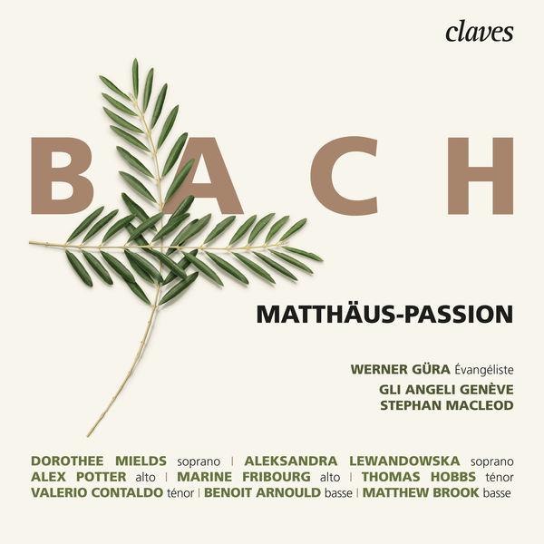 Stephan MacLeod - Bach : Matthäus-Passion, BWV 244