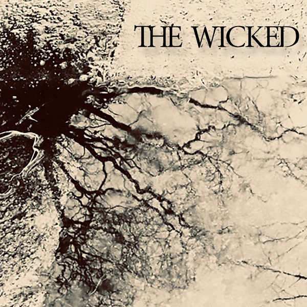 Silent Fracture - The Wicked