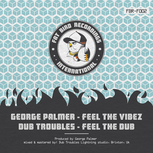 George Palmer and Dub Troubles - Feel the Vibes