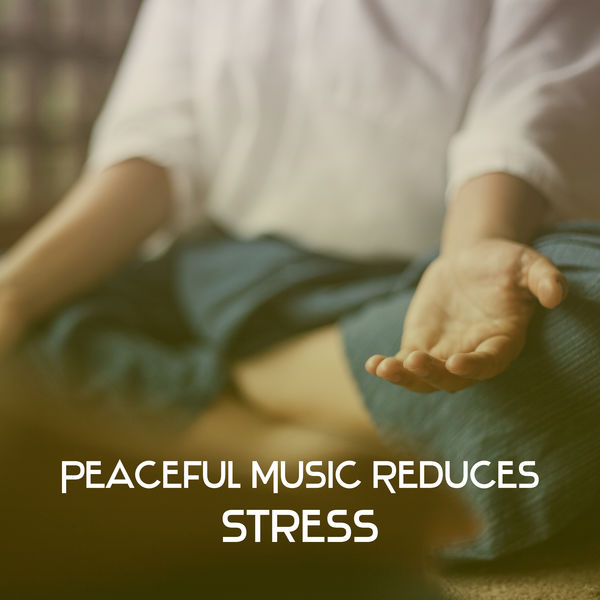 Nature Sounds Relaxation: Music for Sleep, Meditation, Massage Therapy, Spa - Peaceful Music Reduces Stress – Healing Meditation, Stress Relief, Reiki Music, Nature Sounds for Yoga, Silence & Focus
