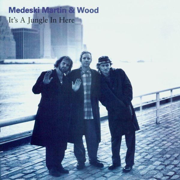 Medeski, Martin & Wood - It's A Jungle In Here