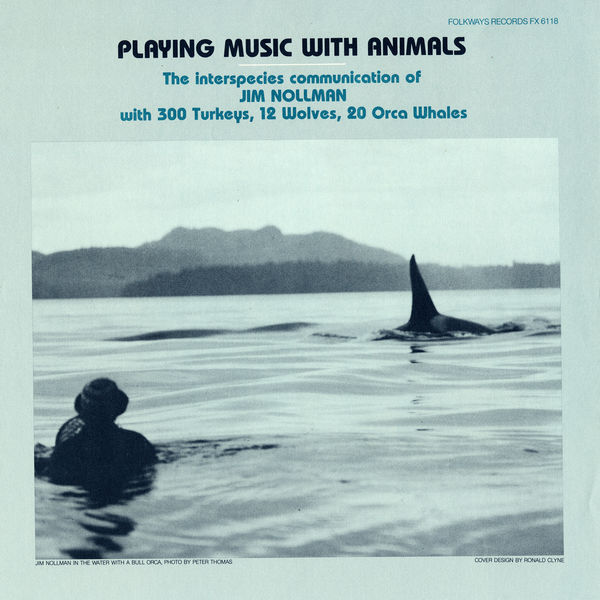 Jim Nollman - Playing Music with Animals: Interspecies Communication of Jim Nollman with 300 Turkeys, 12 Wolves and 20 Orcas
