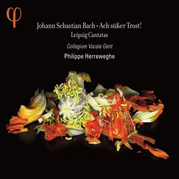 Philippe Herreweghe - Johann Sebastian Bach : Ach süßer Trost !