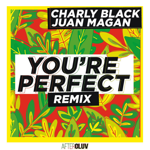 Charly Black - You're Perfect