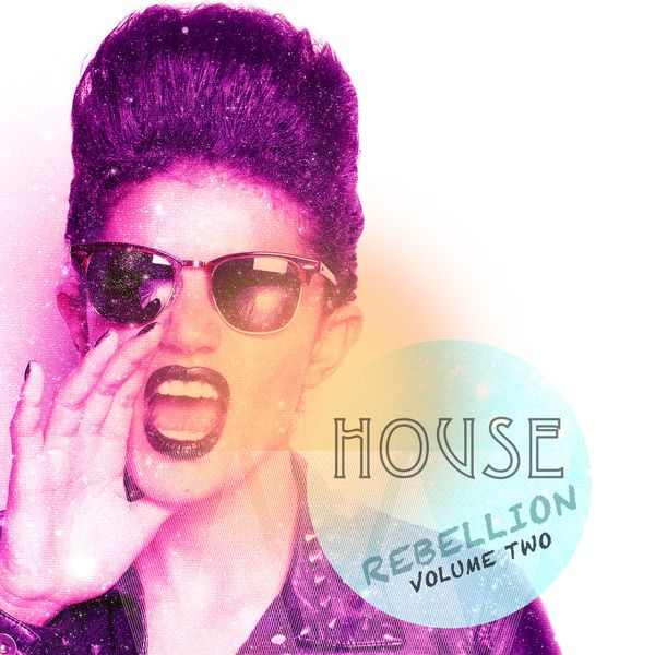 Various Artists - House Rebellion, Vol. 2