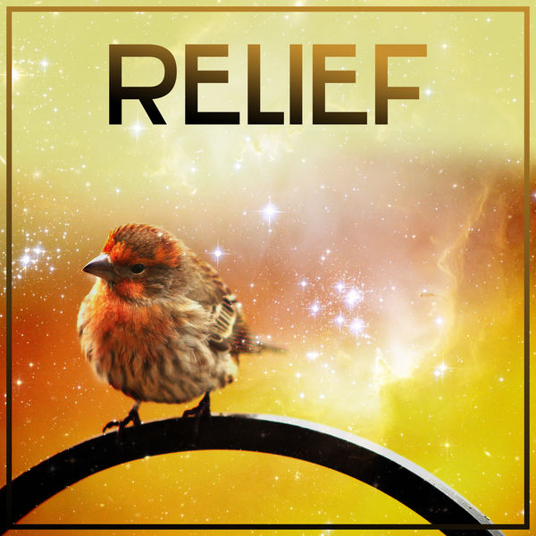 Relief – Nature Sounds for Relaxation, Deep Sleep, Stress