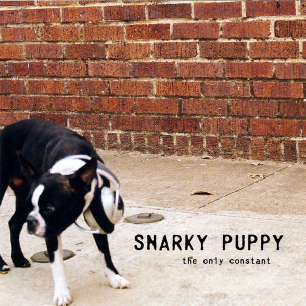 Snarky Puppy - The Only Constant