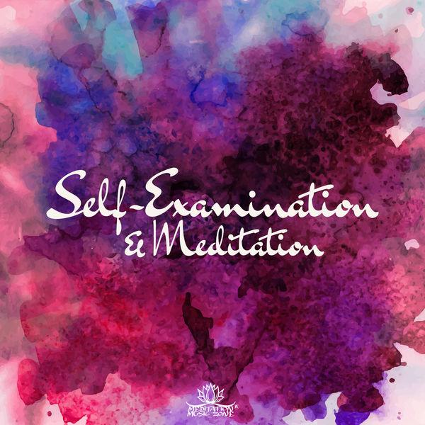 Healing Yoga Meditation Music Consort - Self-Examination & Meditation: Mindful Sounds for Deep Thoughts