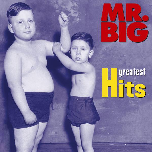 Mr. Big|Greatest Hits