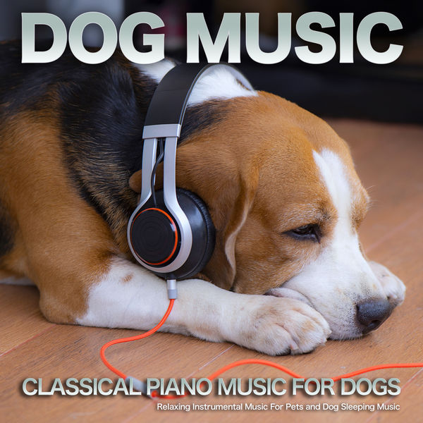 Dog Music - Dog Music: Classical Piano Music For Dogs, Relaxing Instrumental Music For Pets and Dog Sleeping Music