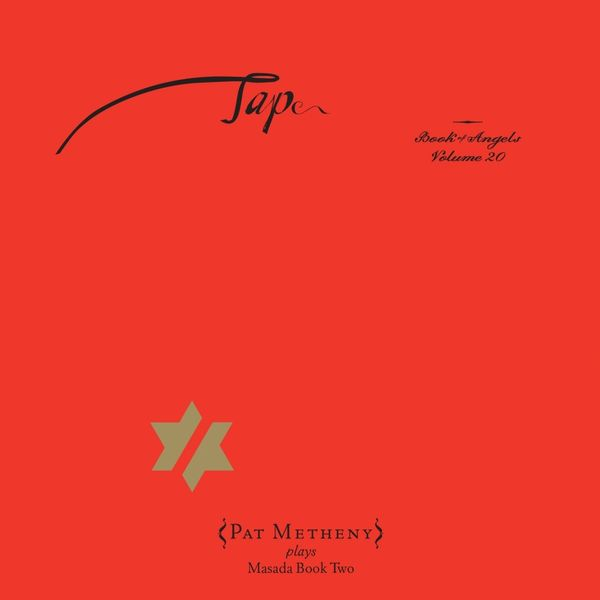 Pat Metheny - Tap: The Book of Angels, Vol. 20