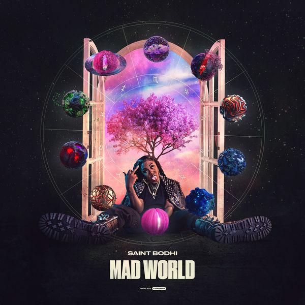 Saint Bodhi - Mad World