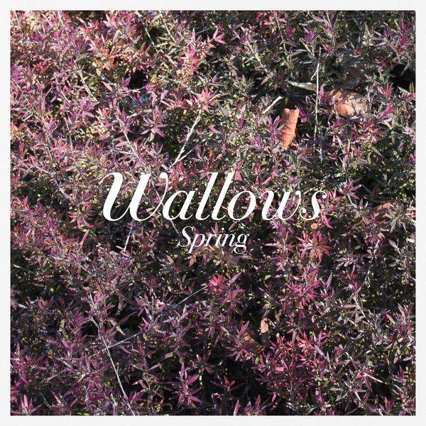 Wallows Spring EP