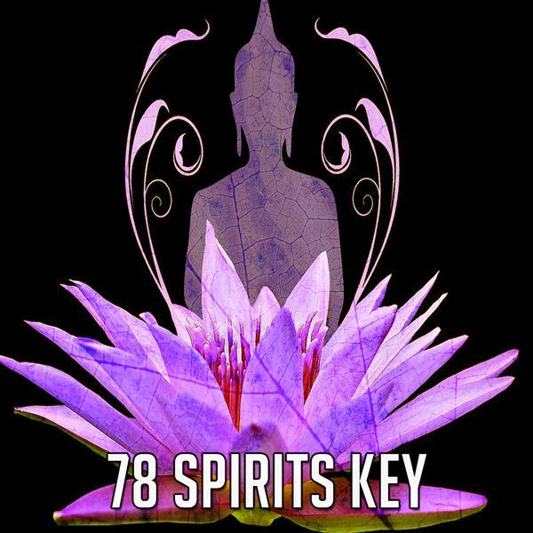 Exam Study Classical Music Orchestra - 78 Spirits Key