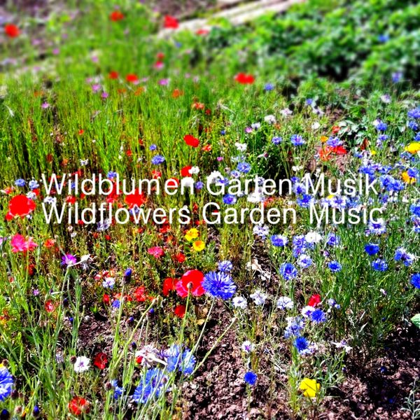 Various Artists - Wildblumen Garten Musik