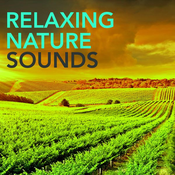Relaxing Nature Sounds - Waterfall Constant Roar of a ... Relaxing Nature Sounds