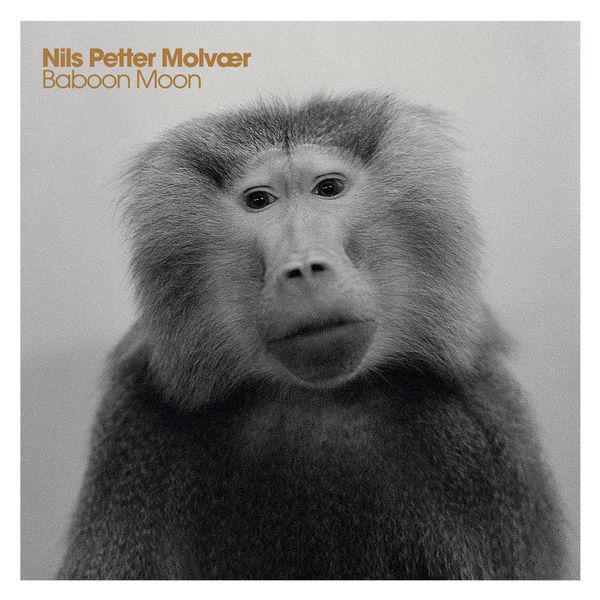 Nils Petter Molvaer - Baboon Moon