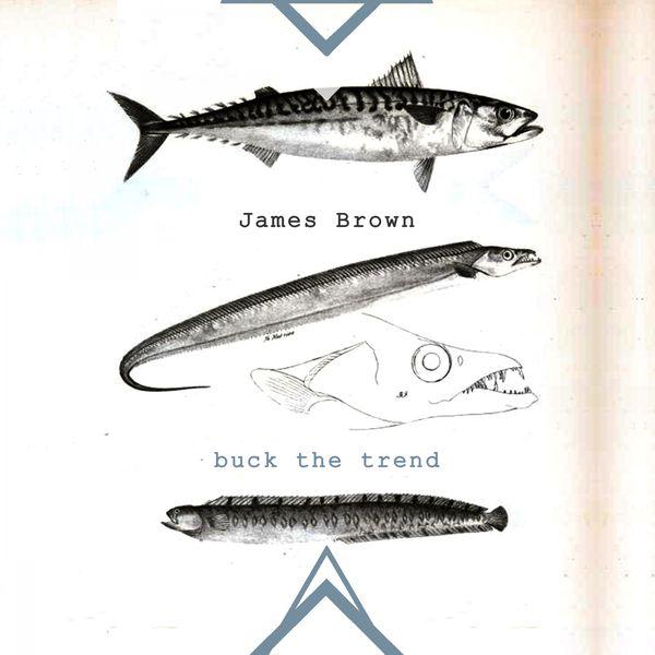 James Brown - Buck The Trend