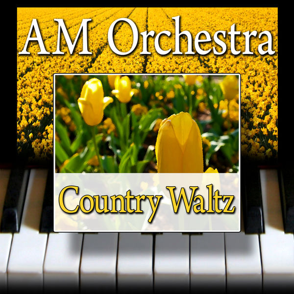 AM Orchestra - Country Waltz