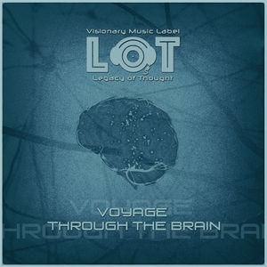 Voyage Through the Brain