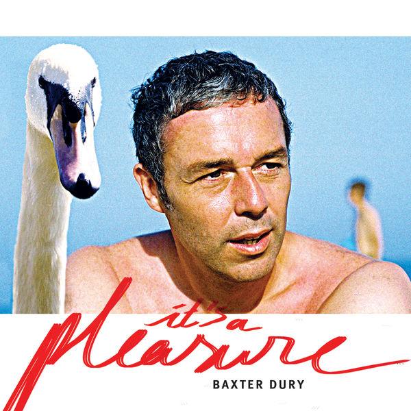 Baxter Dury|It's a Pleasure