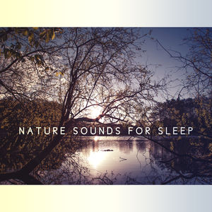 Nature Sounds for Sleep – Relaxation Bedtime, Stress Relief, Deep Dreams, Soothing Music at Goodnight, Sweet Nap, Calming Melodies to Bed, Restful Sleep