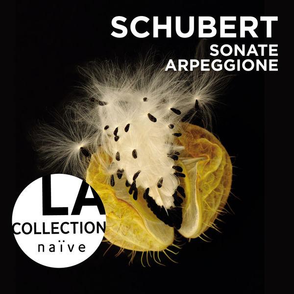 Anne Gastinel - Franz Schubert : Sonate Arpeggione
