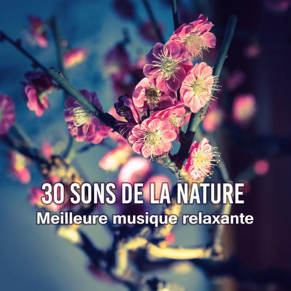 Zone de Détente - 30 Sons de la nature
