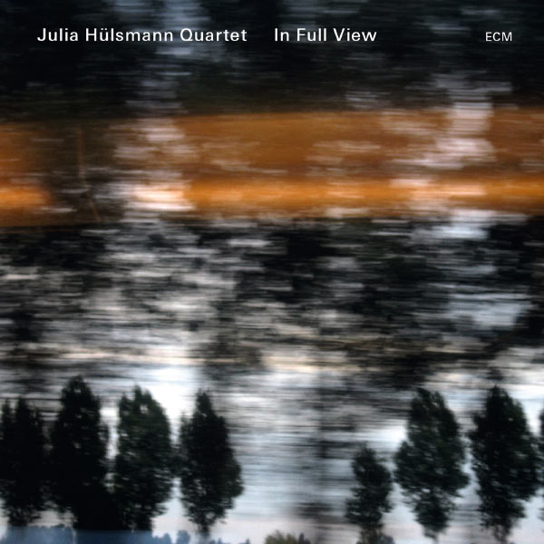 Julia Hülsmann - In Full View