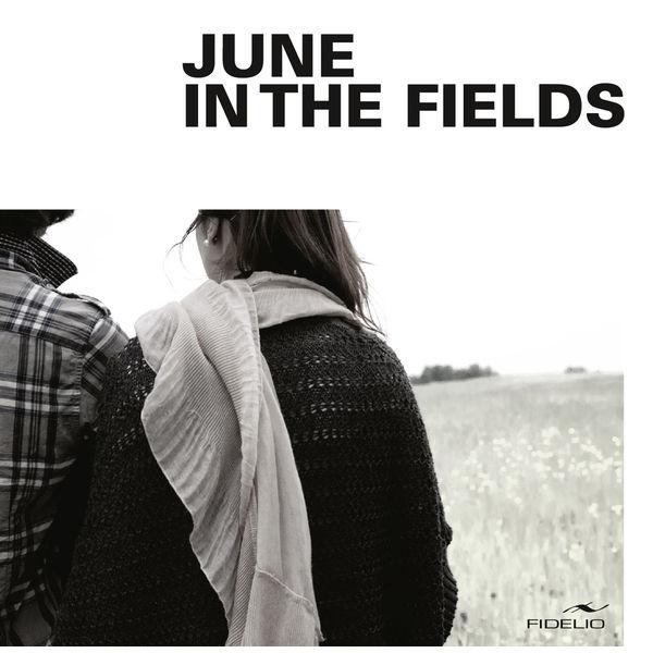 Sebastien Saliceti - June in the Fields