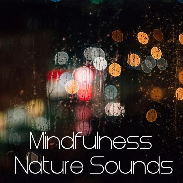Mindfullness Meditation World, Mindfulness Meditation Music Spa Maestro ,Kundalini: Yoga, Meditation, Relaxation , - 2017 Mindfulness Nature Sounds Compilation