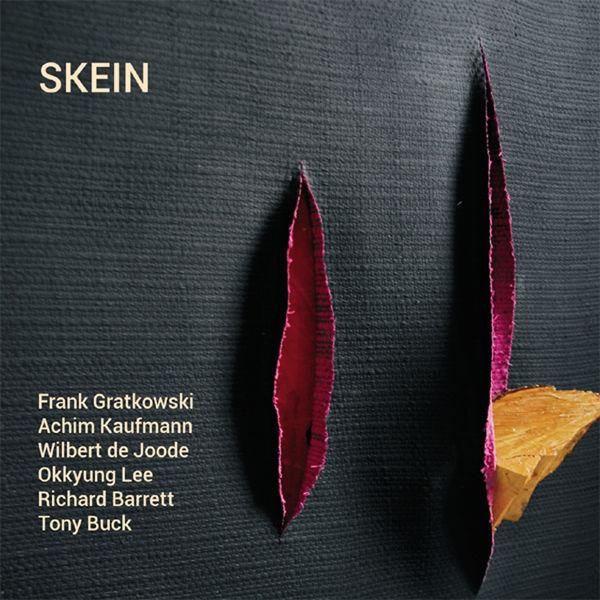 Achim Kaufmann - Skein